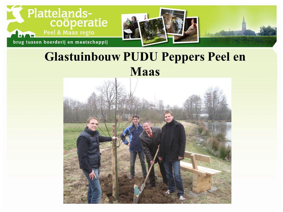 Glastuinbouw PUDU Peppers Peel en Maas
