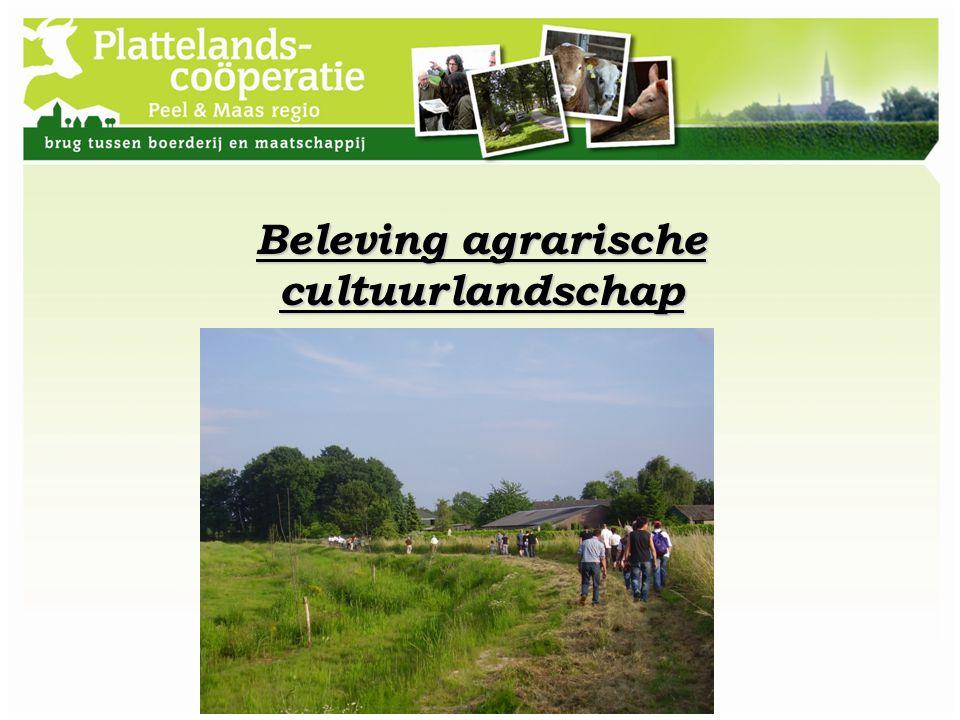 Beleving agrarische cultuurlandschap