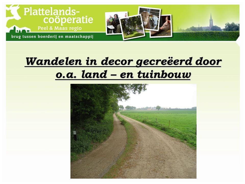 Wandelen in decor gecreëerd door o.a. land – en tuinbouw