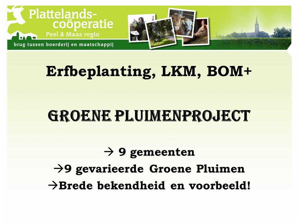 Groene Pluimenproject