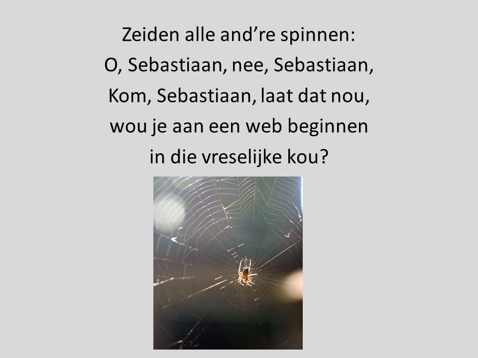 Zeiden alle and're spinnen: O, Sebastiaan, nee, Sebastiaan,