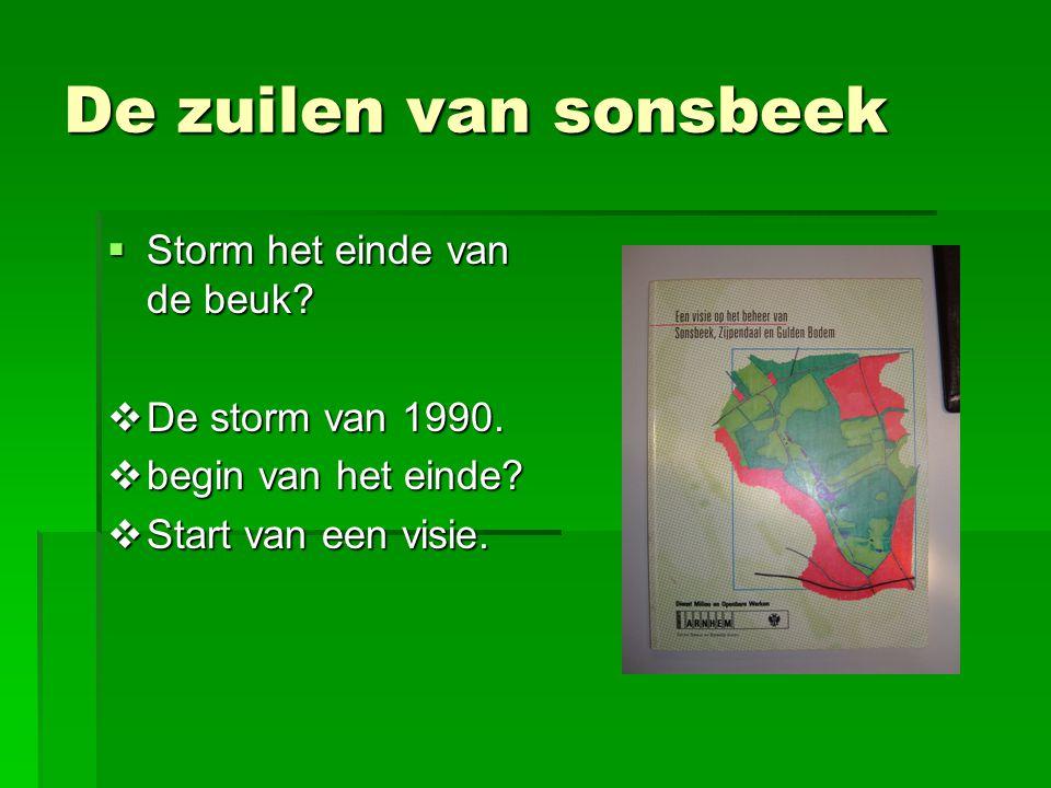 De zuilen van sonsbeek Storm het einde van de beuk De storm van 1990.