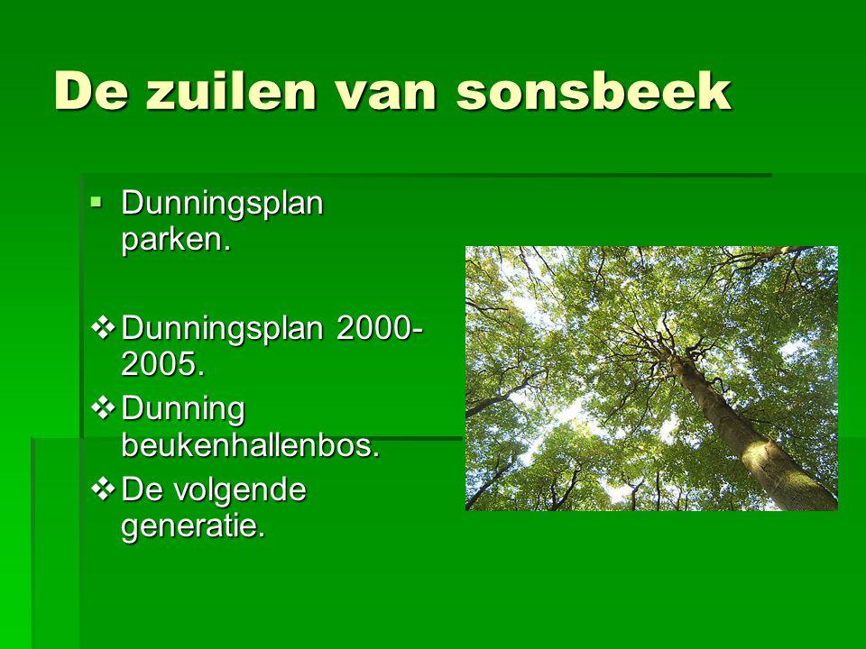 De zuilen van sonsbeek Dunningsplan parken. Dunningsplan 2000-2005.