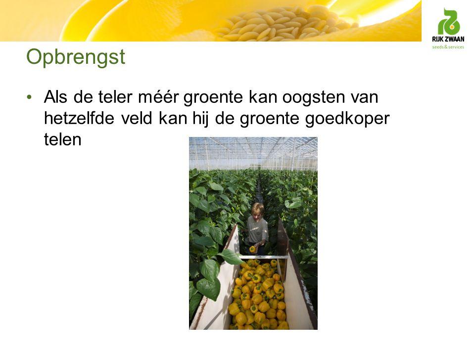 Opbrengst Als de teler méér groente kan oogsten van hetzelfde veld kan hij de groente goedkoper telen.