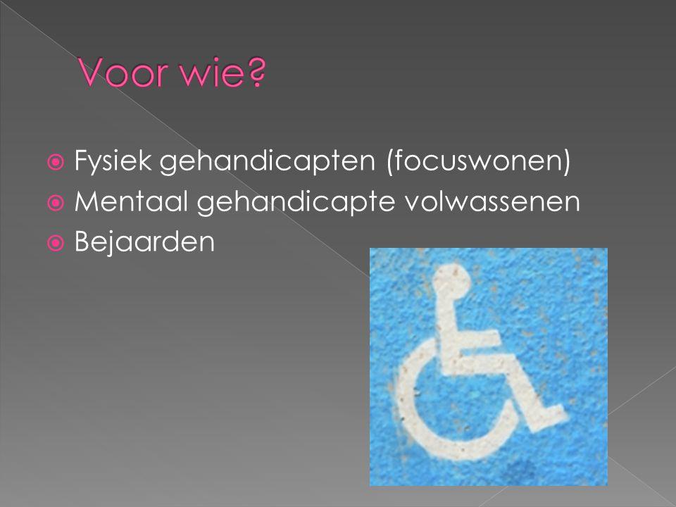 Voor wie Fysiek gehandicapten (focuswonen)