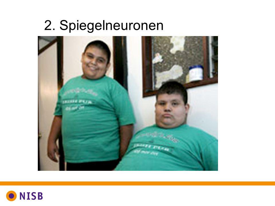 2. Spiegelneuronen Nog een belangrijk aspect bij onbewuste gedragsverandering: Spiegelneuronen.