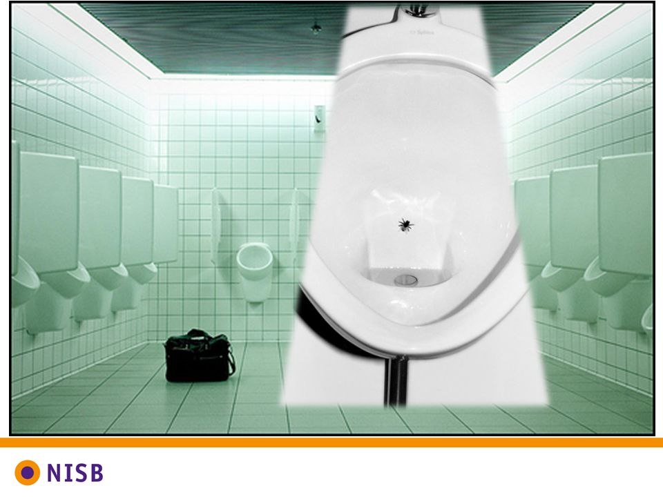 Deze vlieg in de mannen wc op Schiphol is een zeer geslaagde nudge.