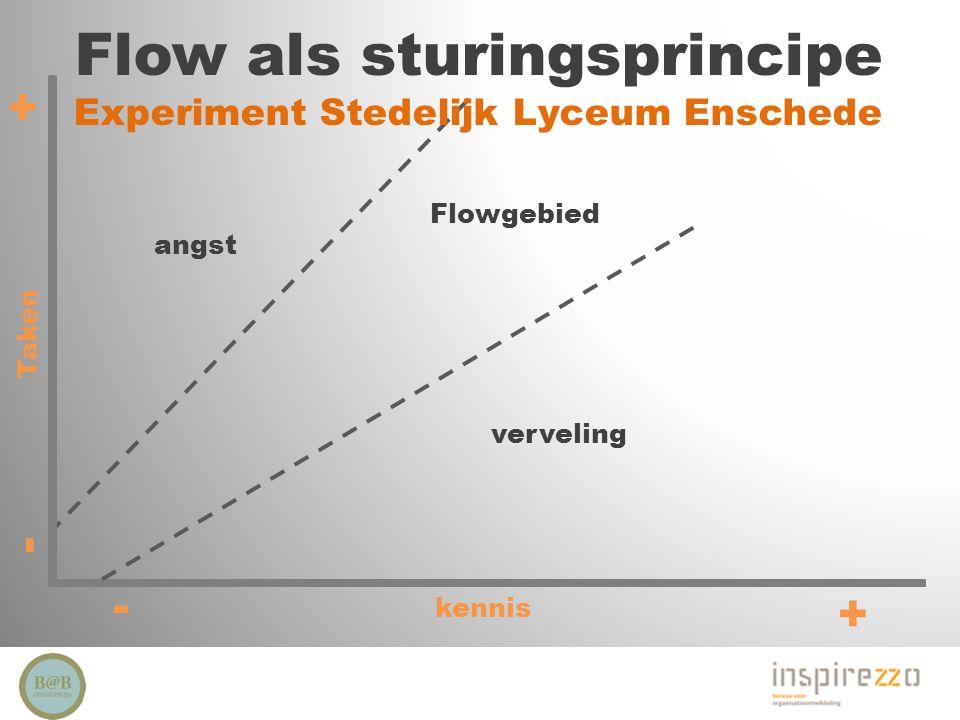 Flow als sturingsprincipe