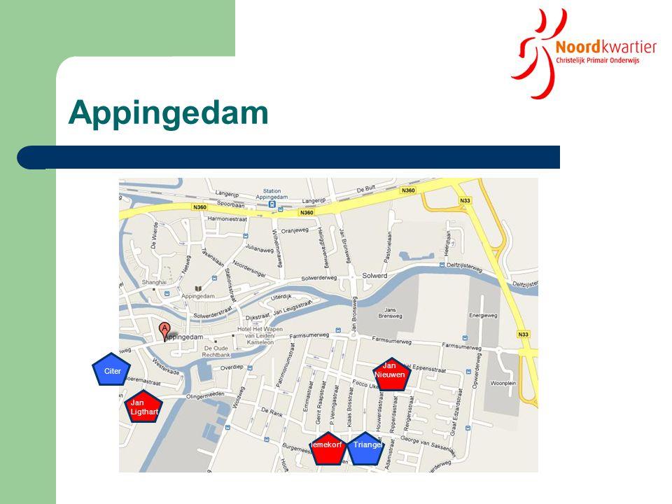 Appingedam Jan Nieuwen Citer Jan Ligthart Iemekorf Triangel