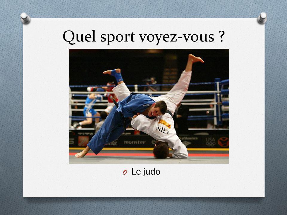 Quel sport voyez-vous Le judo