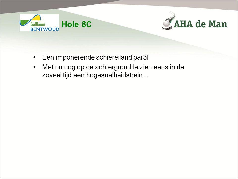 Hole 8C Een imponerende schiereiland par3!