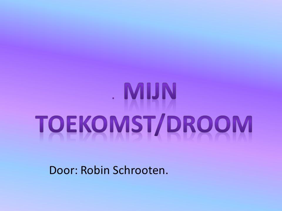 . Mijn Toekomst/droom Door: Robin Schrooten.