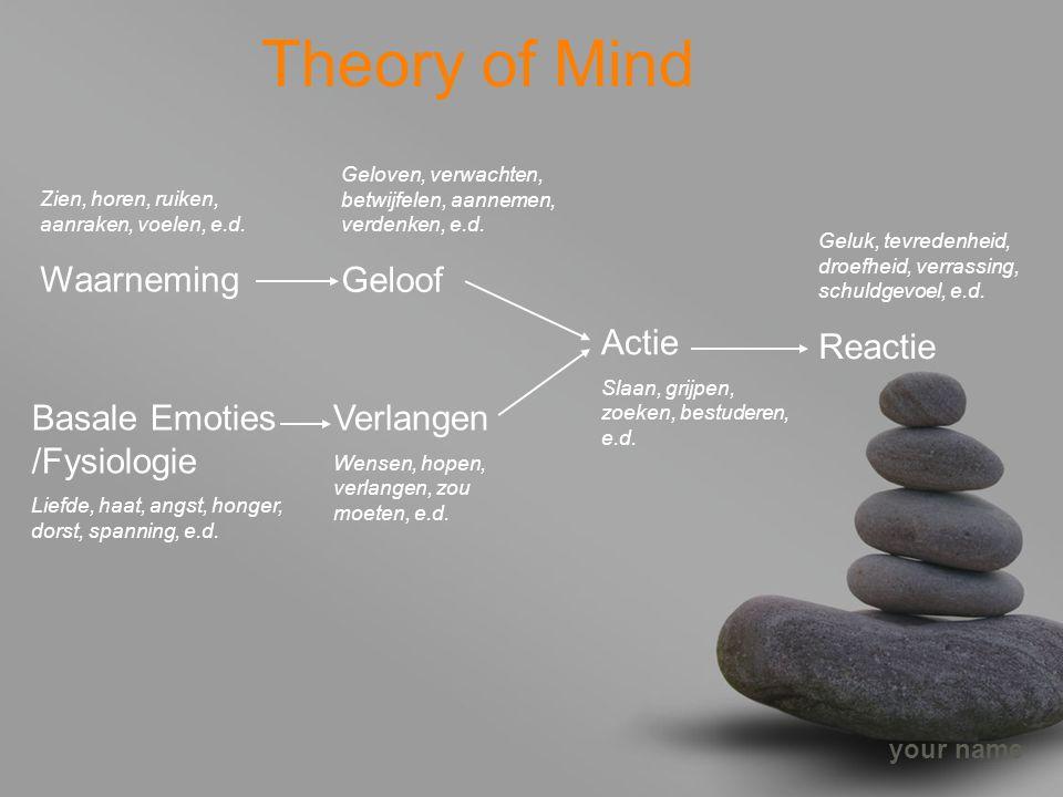 Theory of Mind Geloof Waarneming Reactie Actie