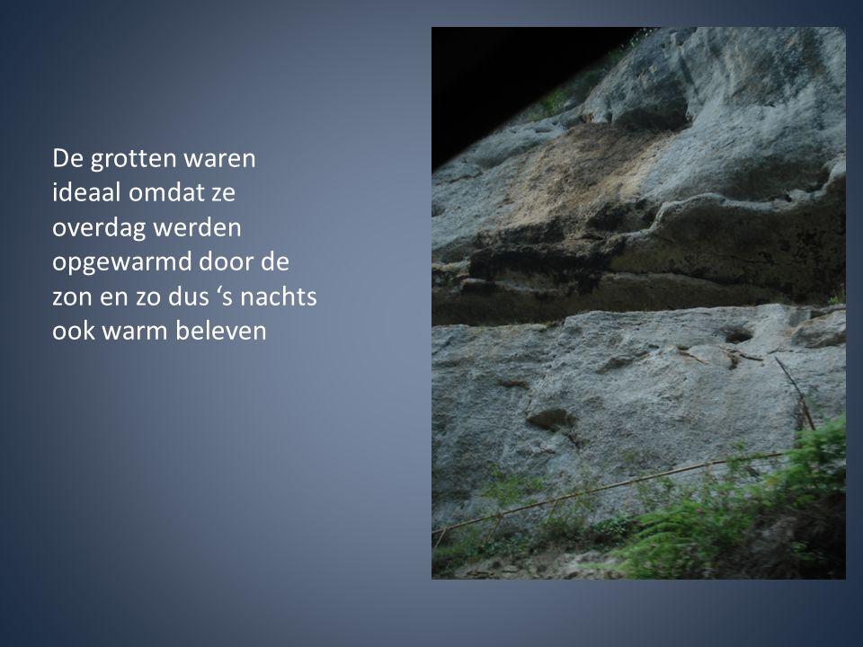 De grotten waren ideaal omdat ze overdag werden opgewarmd door de zon en zo dus 's nachts ook warm beleven