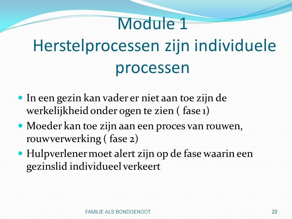 Module 1 Herstelprocessen zijn individuele processen
