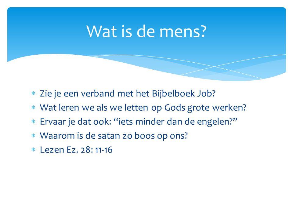 Wat is de mens Zie je een verband met het Bijbelboek Job