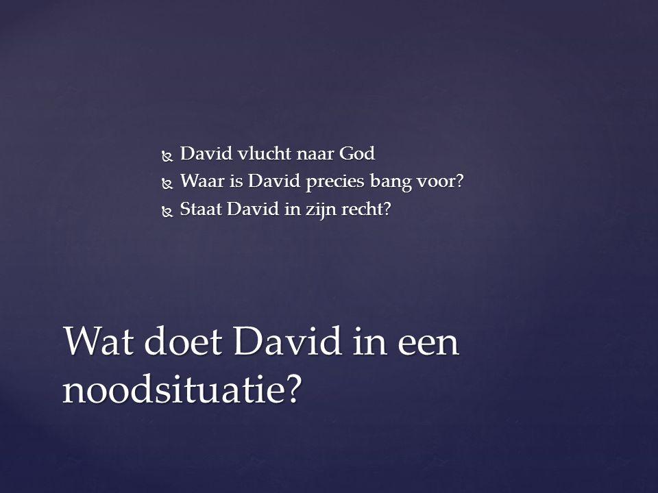 Wat doet David in een noodsituatie