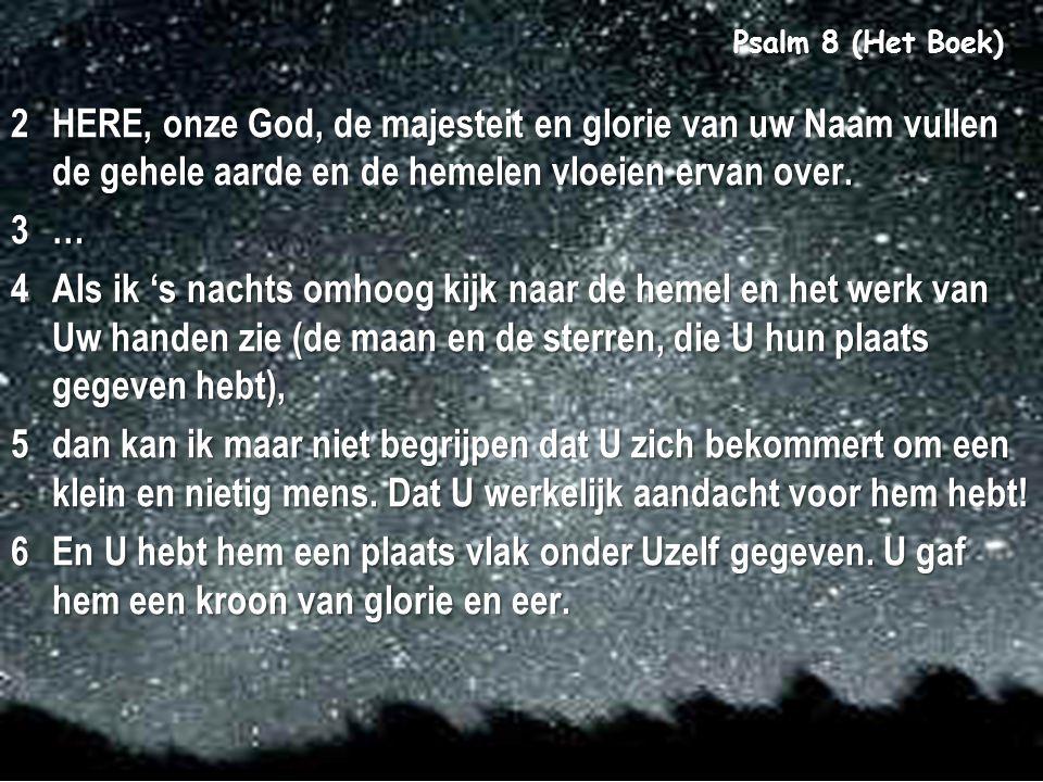 Psalm 8 (Het Boek)