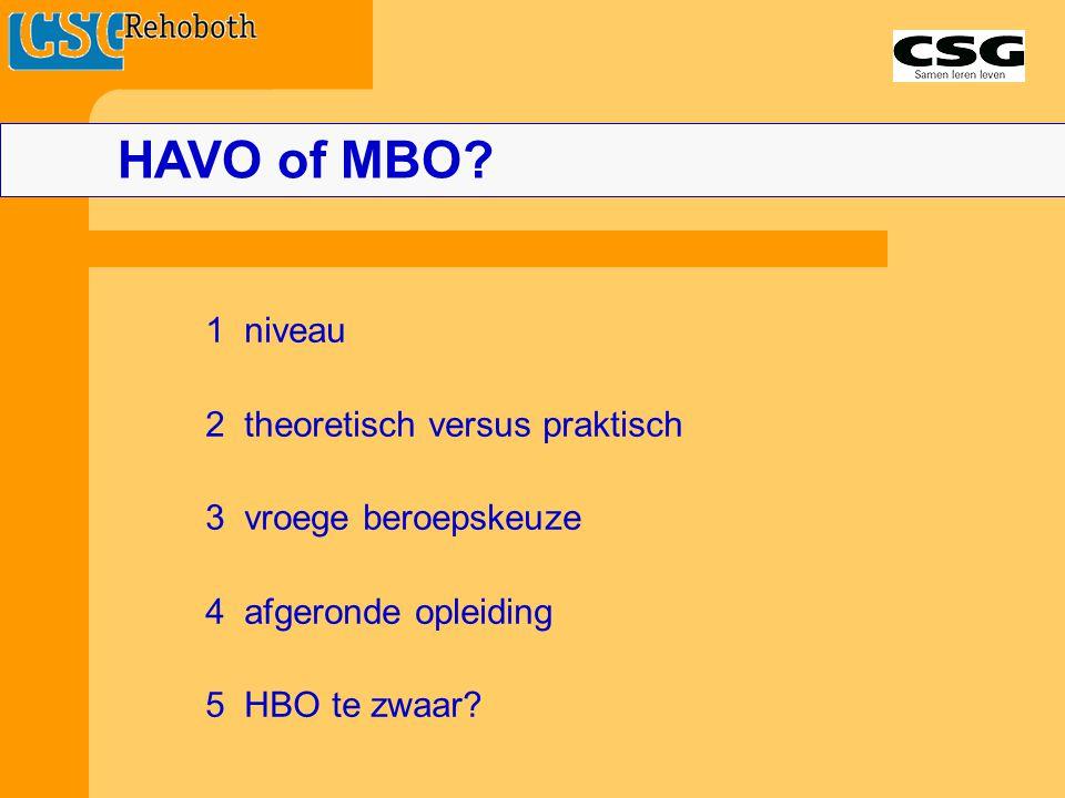HAVO of MBO 1 niveau 2 theoretisch versus praktisch