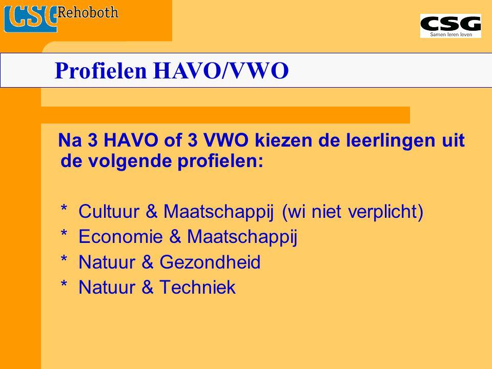 Profielen HAVO/VWO Na 3 HAVO of 3 VWO kiezen de leerlingen uit de volgende profielen: * Cultuur & Maatschappij (wi niet verplicht)