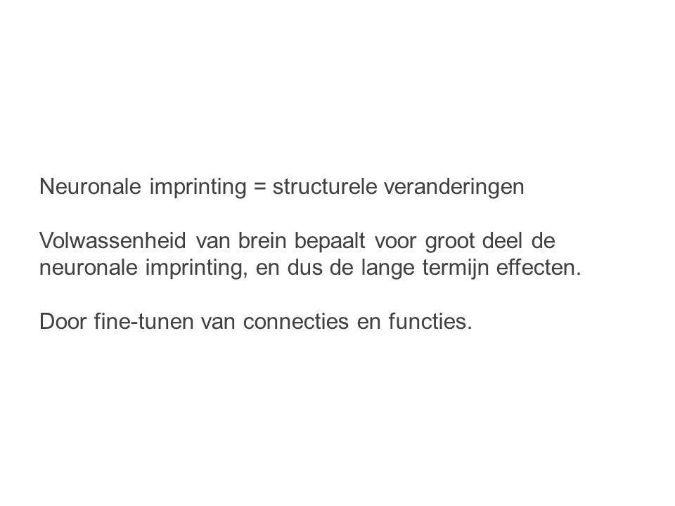 Neuronale imprinting = structurele veranderingen