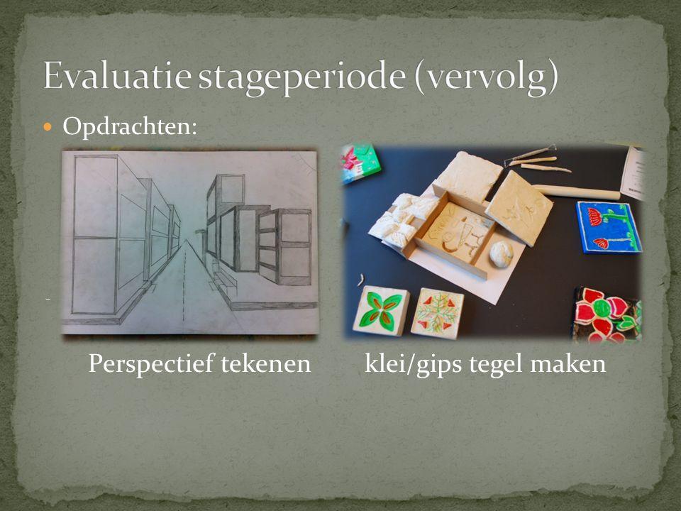 Evaluatie stageperiode (vervolg)