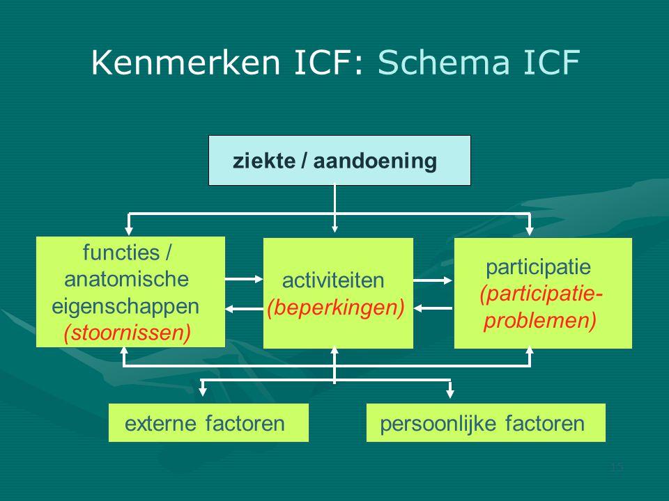 Kenmerken ICF: Schema ICF