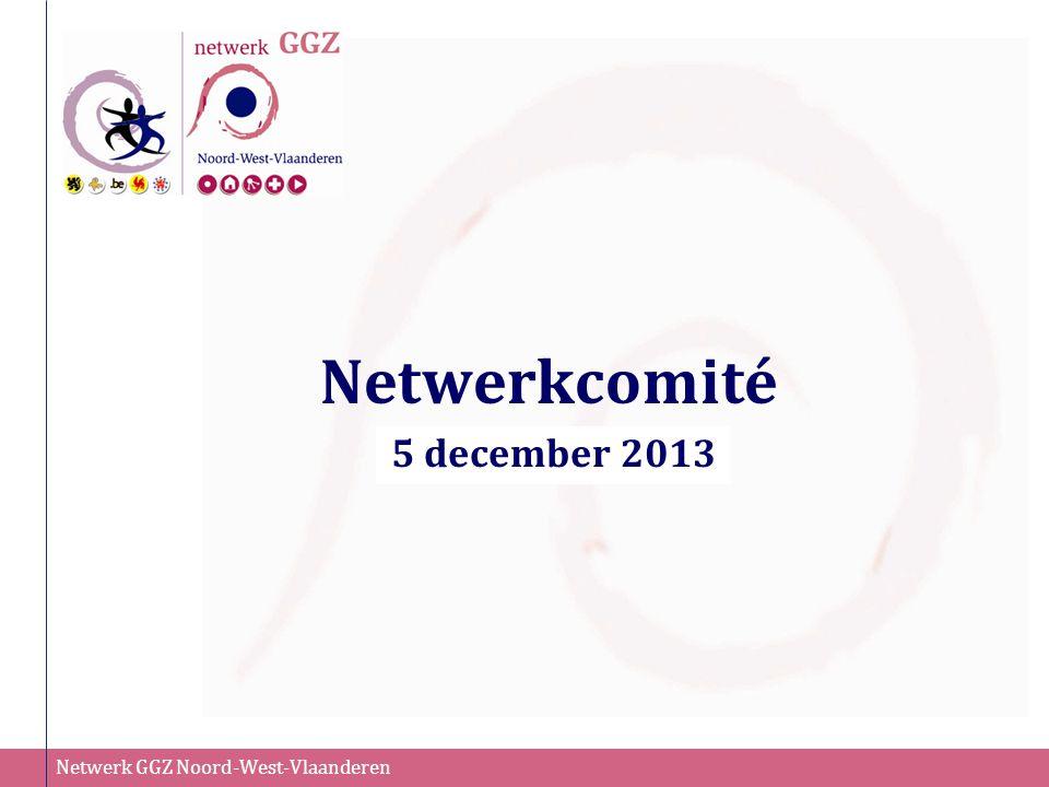 Netwerkcomité 5 december 2013