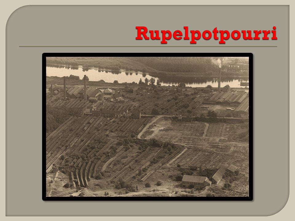 Rupelpotpourri
