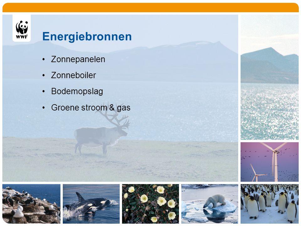 Energiebronnen Zonnepanelen Zonneboiler Bodemopslag