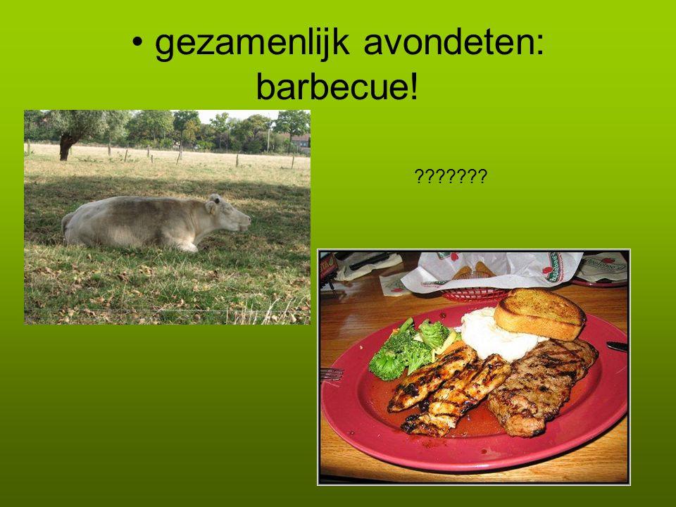 gezamenlijk avondeten: barbecue!