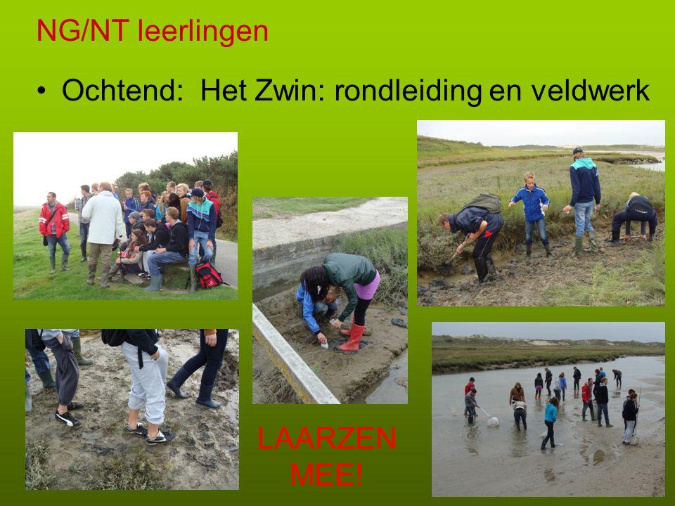 NG/NT leerlingen Ochtend: Het Zwin: rondleiding en veldwerk LAARZEN MEE!