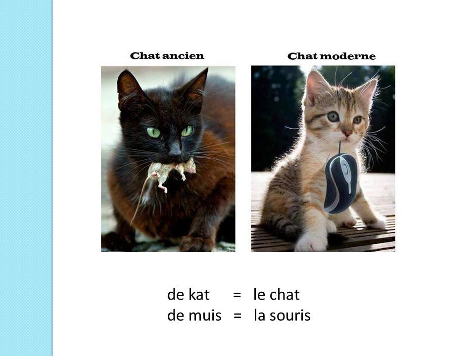 de kat = le chat de muis = la souris
