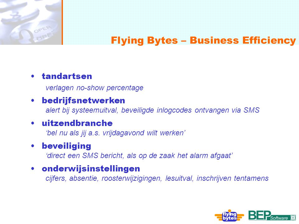 Flying Bytes – Business Efficiency