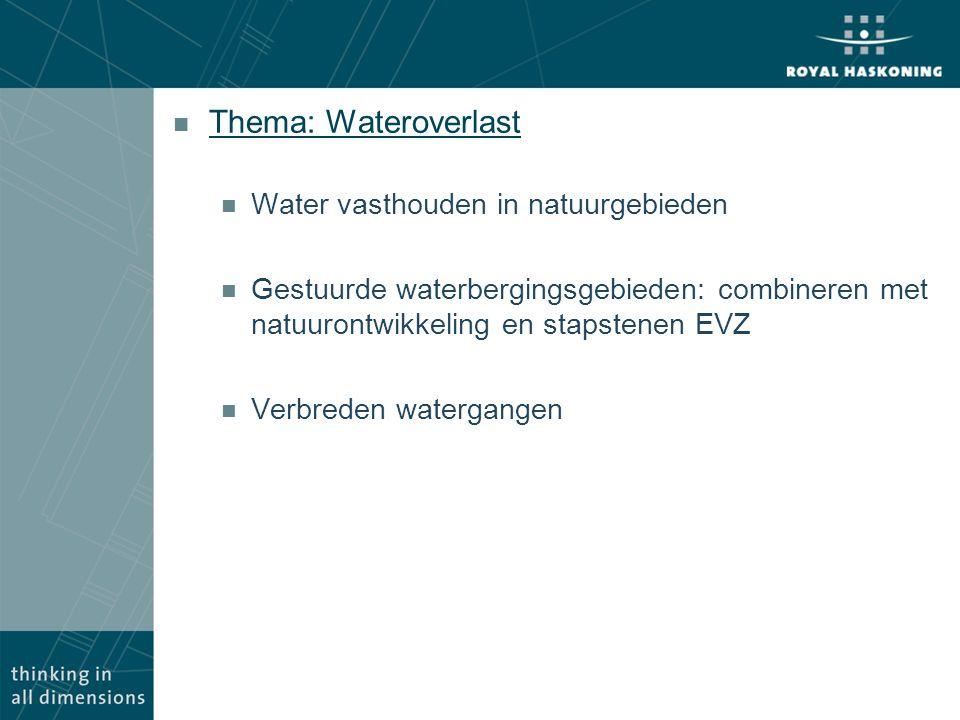 Thema: Wateroverlast Water vasthouden in natuurgebieden