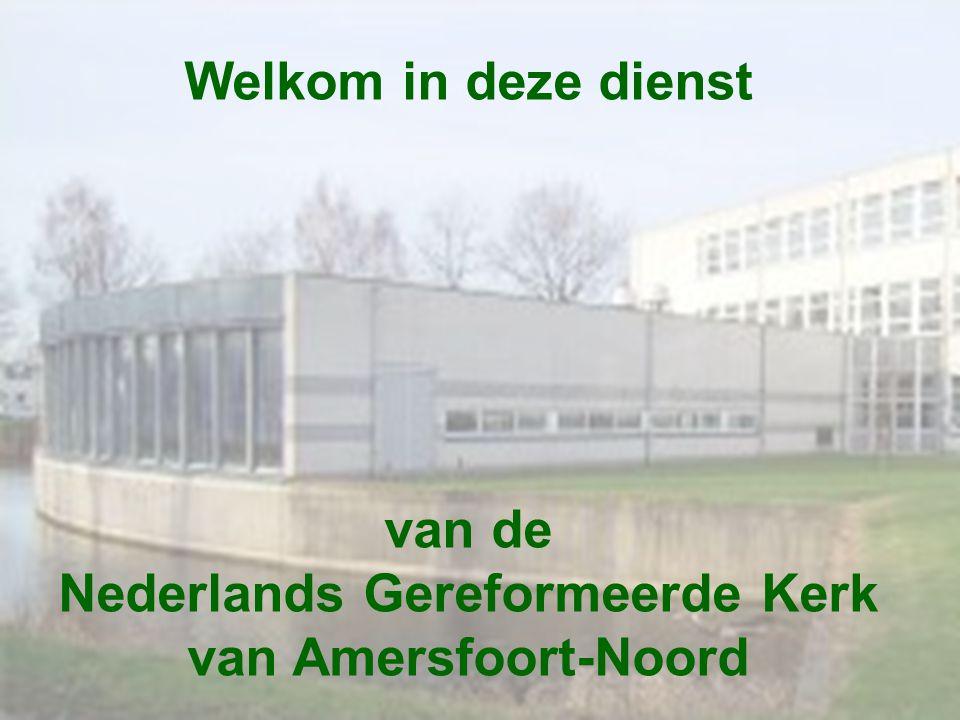 Nederlands Gereformeerde Kerk