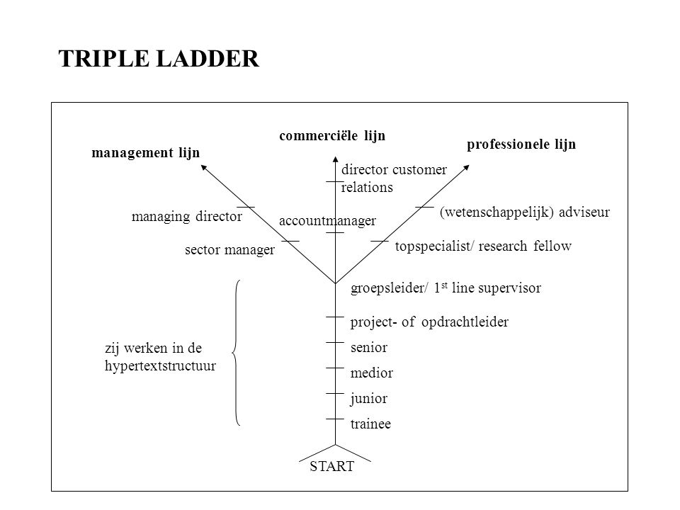 TRIPLE LADDER (wetenschappelijk) adviseur trainee junior medior senior
