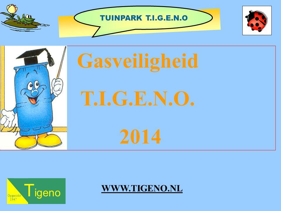 Gasveiligheid T.I.G.E.N.O. 2014 Tigeno WWW.TIGENO.NL