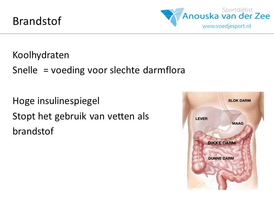 Brandstof Koolhydraten Snelle = voeding voor slechte darmflora