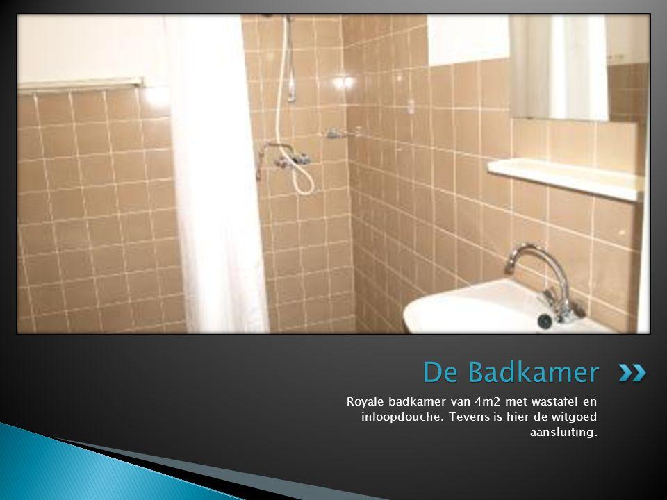 De Badkamer Royale badkamer van 4m2 met wastafel en