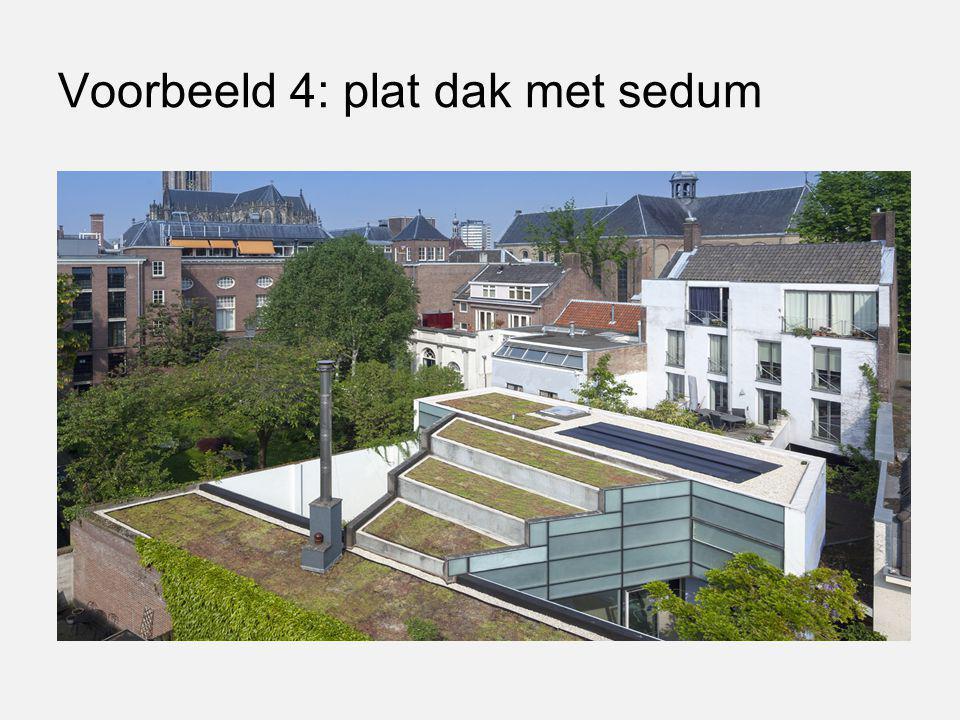 Voorbeeld 4: plat dak met sedum