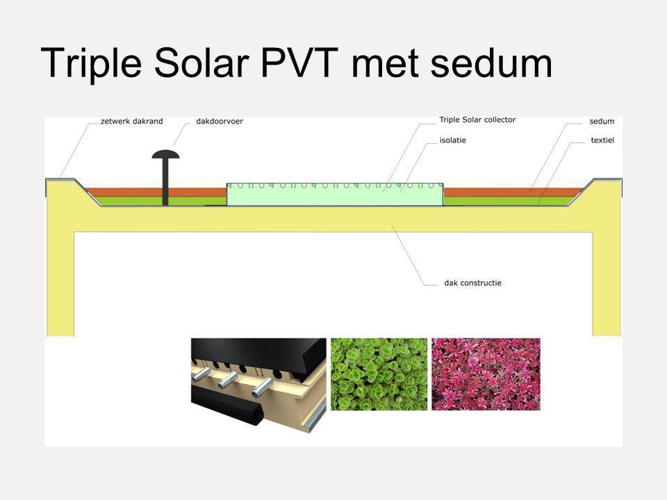 Triple Solar PVT met sedum