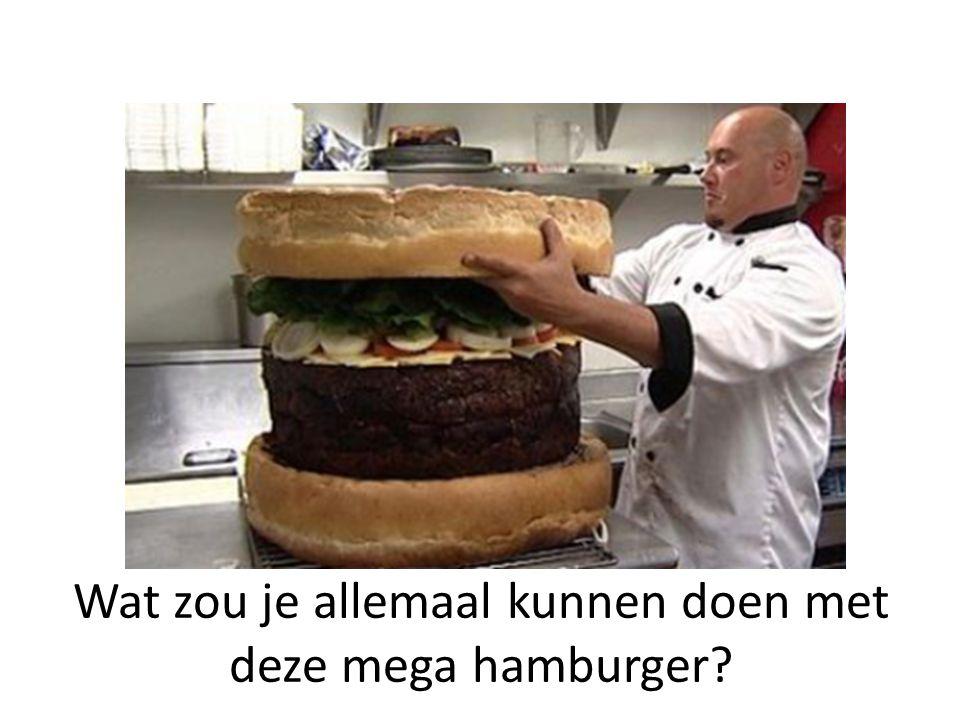 Wat zou je allemaal kunnen doen met deze mega hamburger