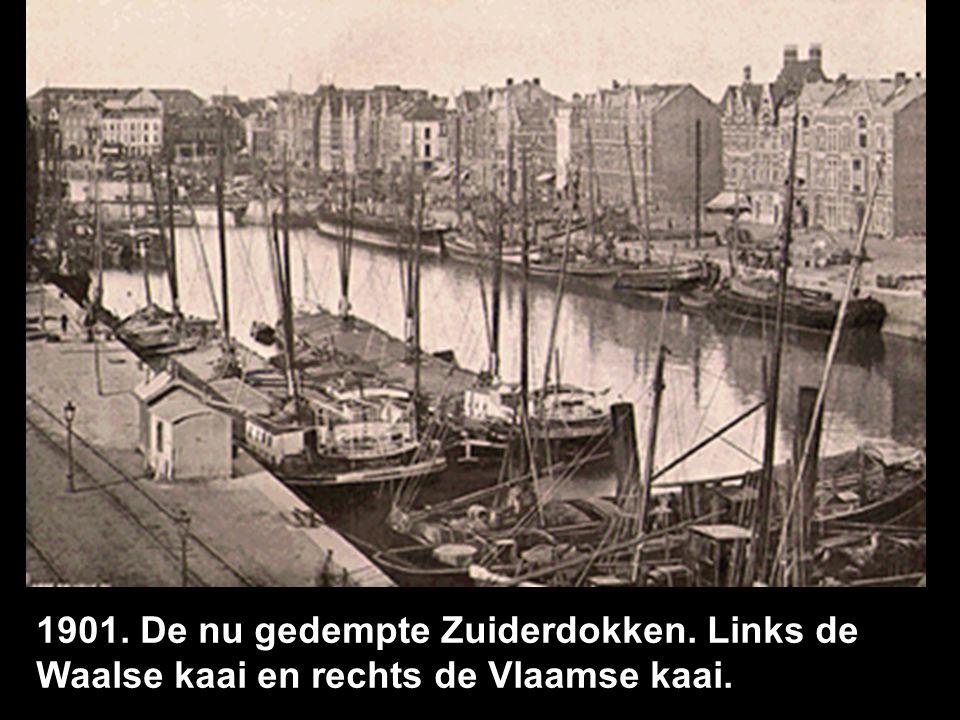 1901. De nu gedempte Zuiderdokken