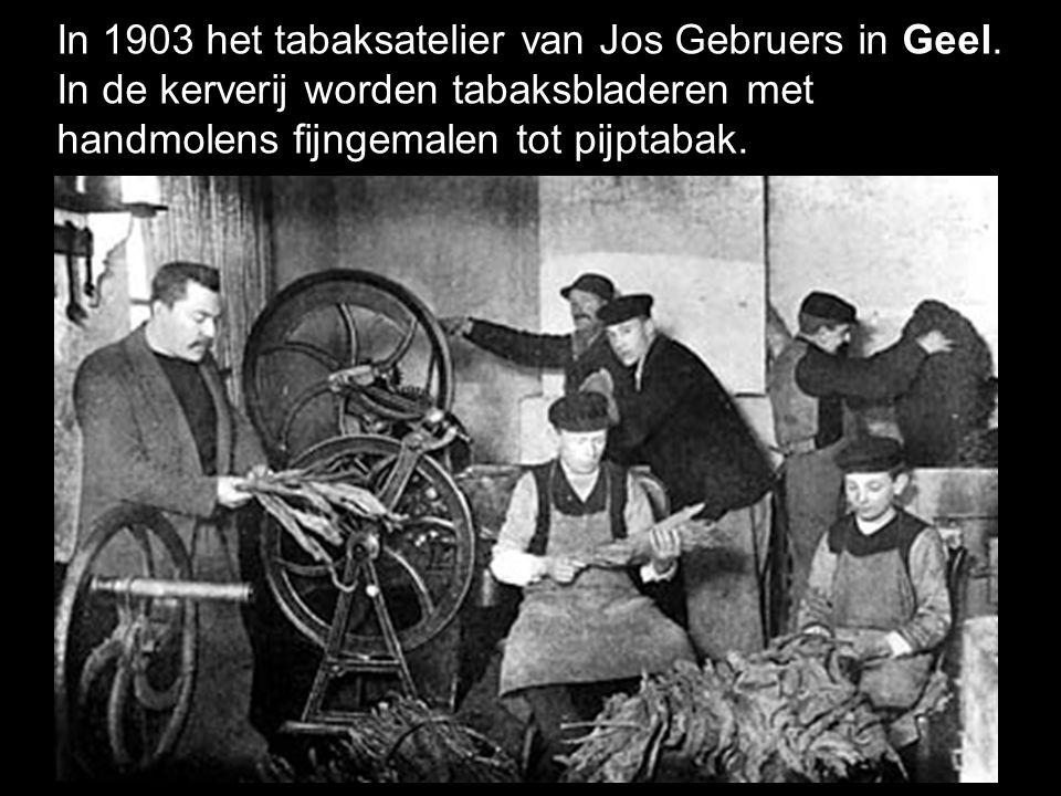In 1903 het tabaksatelier van Jos Gebruers in Geel