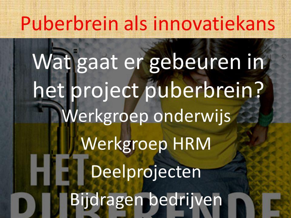 Wat gaat er gebeuren in het project puberbrein