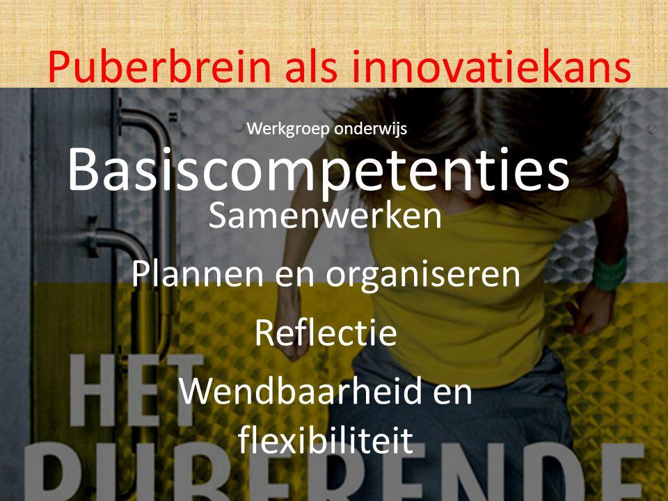 Basiscompetenties Puberbrein als innovatiekans Samenwerken