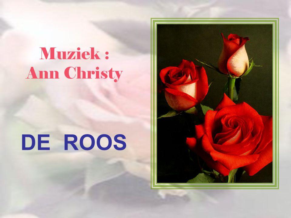 Muziek : Ann Christy DE ROOS
