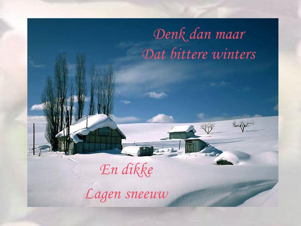 Denk dan maar Dat bittere winters