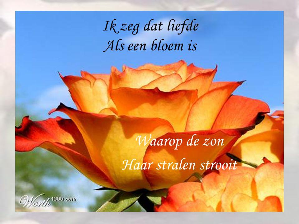 Ik zeg dat liefde Als een bloem is